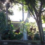 Meine Eindrücke in Cuernavaca, Mexiko