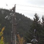 Können Sie mich hören? – Mobilfunkpreise in Kanada